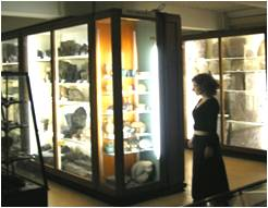 Museum Display Case and Cabinet Speakers